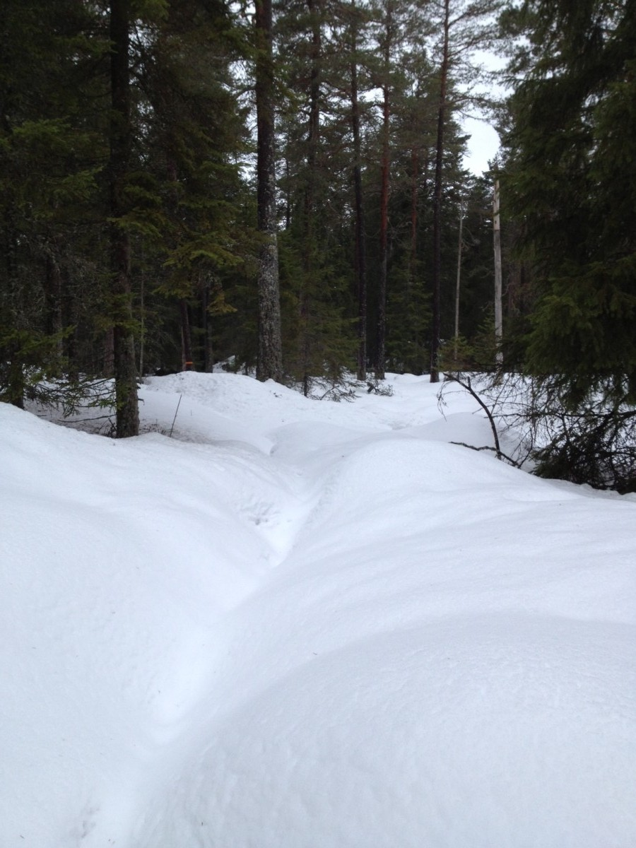 Munkastigen snö